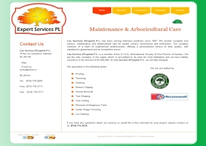 Les Services d'Experts -  website design by SynergicWebs