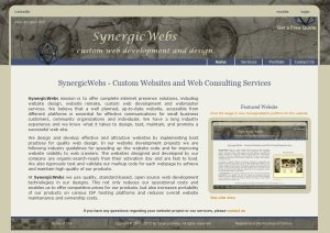 SynergicWebs Custom Web Development -  website design by SynergicWebs