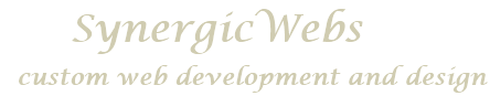 SynergicWebs Logo -  Custom Web Design and Development, Ottawa
